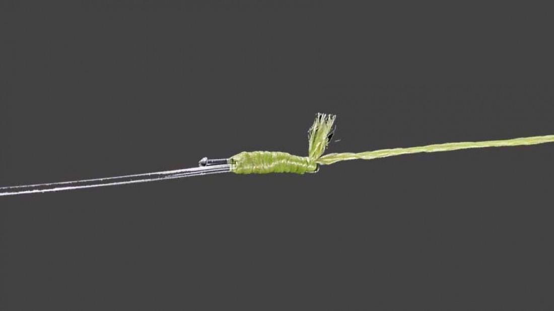 Der Albright-Knoten, die Verbindung zur Schlagschnur