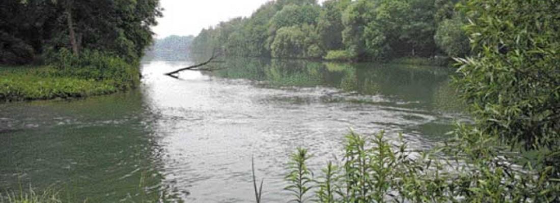 Sind unsere Flüsse noch zu retten?