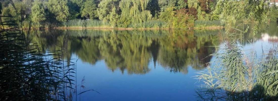 Sommerurlaub am Hirschfeldsee im Sperrfechter Freizeitpark